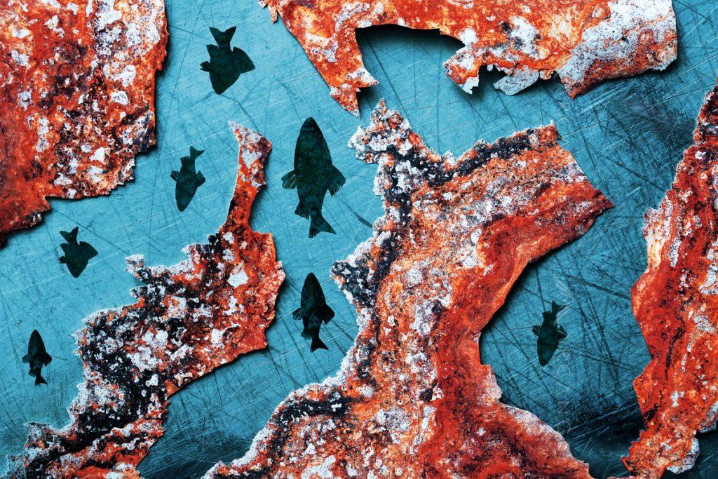 Photo-Illustration of fishes on rusty background